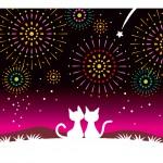 隅田川の花火大会にデートで行くといいお店は?スカイツリーと花火を見る?2015年の日程は?