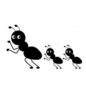 室内の赤蟻の駆除方法は?子供に害のないやり方と、おすすめのコツ!